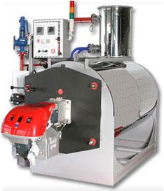 Промышленный парогенератор на газу тутовый шелк купить